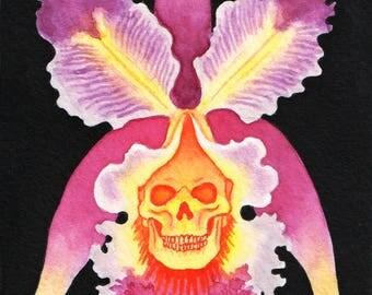Skull Orchid- original painting