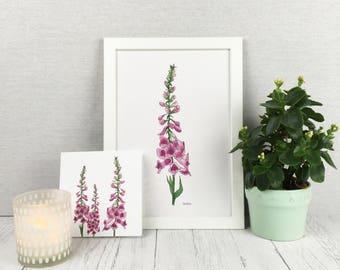Foxglove Print / Art Print / Wall Art / Floral Print / Plant Print / Wall Prints / Flower Lover Gift / Watercolour Print / Gift For Gardener