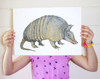 Armadillo Print / Armadillo Poster / Nursery Animal Print / Kids Wall Art / Armadillo Print / Animal Illustration / A4 A3 / Desert Art /