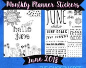 Planner Stickers, June 2018, Bullet Journal Stickers, summer, coloring page, calendar, printable, bujo accessories, bird stickers, Gemini
