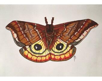 Fuzzy Moth Print