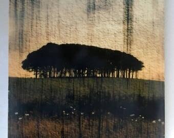 "Cookworthy Knapp, Devon (2). Encaustic art, mixed media, 9""x7.5"". 1"" deep. Beech copse, beech trees, wall art"