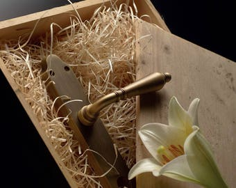 Florenzia - Classic Brass Door Handles