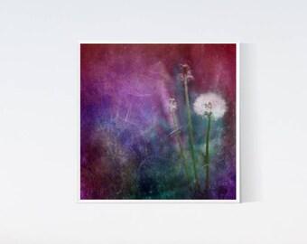 Dandelion wall art, dreamy photography, 12x12 art, printable picture, dandelions picture, dandelions art decor, nature photography, purple
