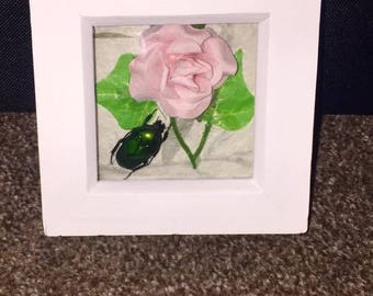 Framed Green Beetle
