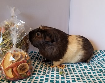 Organic Guinea Pig Snack Bag and Hay Topper