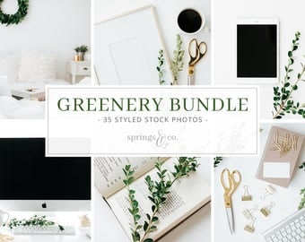 Desktop Stock Photo Bundle Greenery Styled Stock Photos Social Media Styled Stock Photo Bundle with Greenery Stock Photo Mockup Bundle -B001