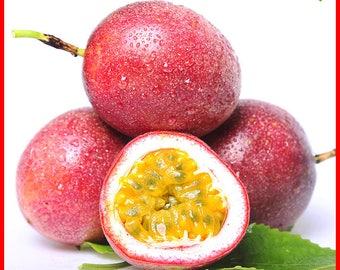 40 Seeds Passion Fruit (Passiflora Caerulea) fresh fragrant bloom huge flower, robust climber Original Package