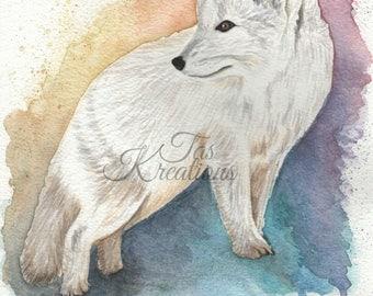Original Watercolour Arctic Fox Print by Artist Tas Kreations Endangered Animal Wildlife Art Nursery