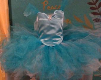 Cinderella inspired-Little princess tutu