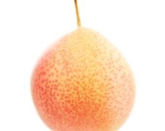 Pear, photographic print