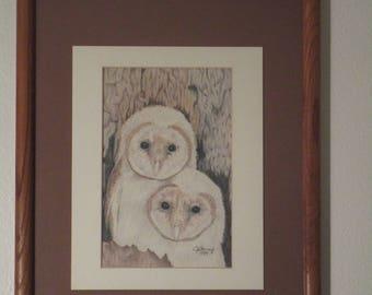 Colored Pencil Art - Owls