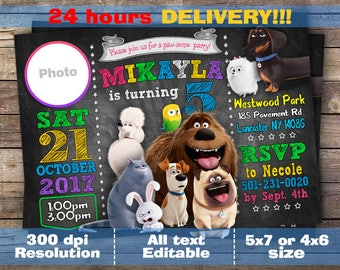 Secret Life Of Pets Invitation, Pets Chalkboard Invitation, Secret Life of Pets Birthday, Secret Life Of Pets Invite, Dadital file, For Girl