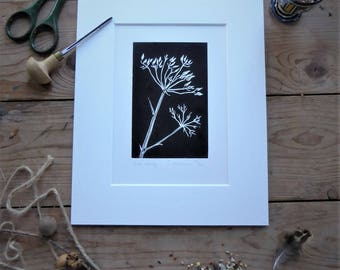 Cow Parsley Seedheads. Limited edition linoprint with mount. Black and white design.