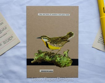 Handmade Blank Greeting Card (Flat A6) - Meadowlarks - Golden Guide to BIRDS