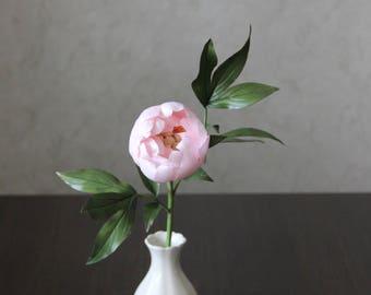 Peony, flowers