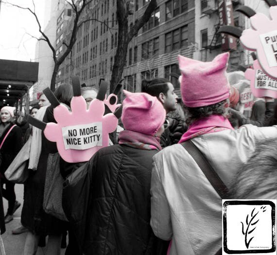 """No More Nice Kitty,"" New York City Women's March, 2017."