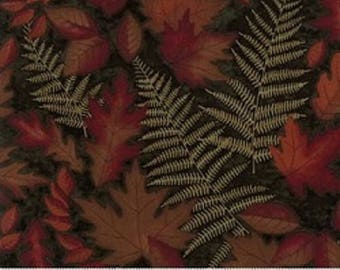 Autumn Reflections - Green Shadow