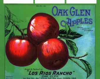 Original vintage apple crate label 1940s Oak Glen Mountain Apples Yucaipa San Bernardino California Green