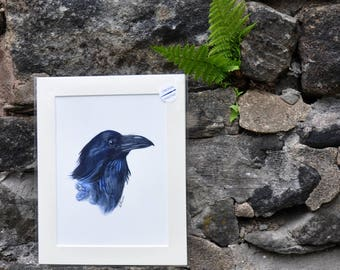 Raven II -  Original Watercolor Painting, painted by C.Raven - 8x6inches MOUNTED to fit 10x8inches frame opening