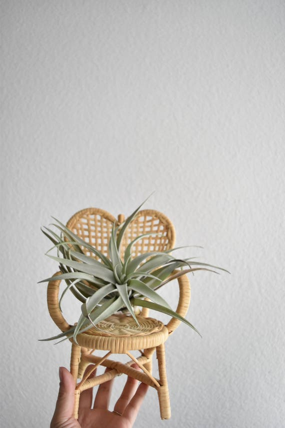 vintage wicker heart chair planter / plant stand / doll chair / boho chic / 1 chair