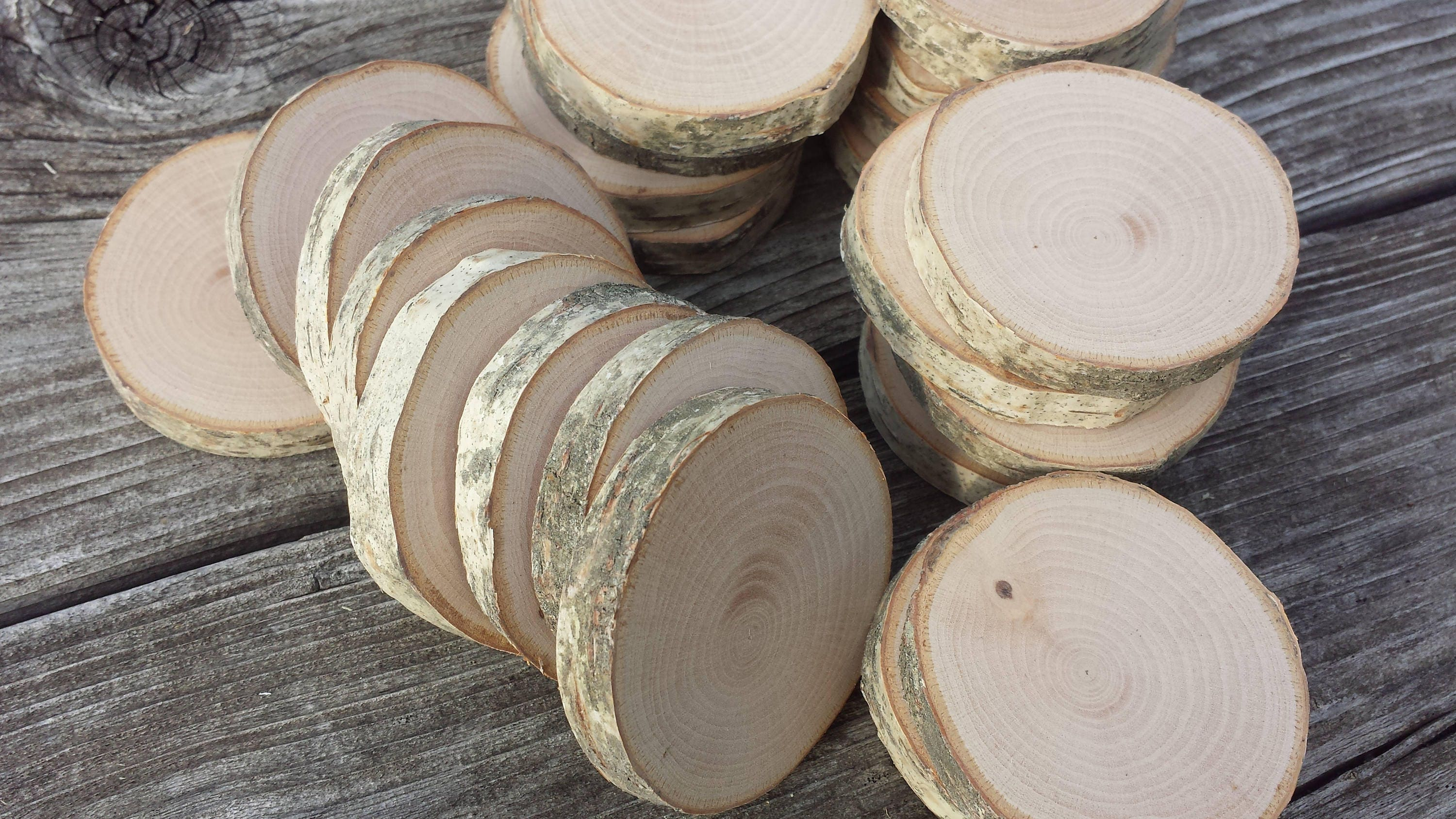 Small white birch wood hand cut slices to inch
