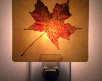 Maple Leaf plug in Nightlight. Autumn Leaf Print. Mood Light. Nursery, Bathroom,Hallway, Safety Light.