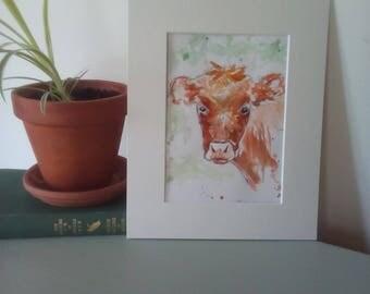 Pen and wash cow illustration, original calf watercolour, mounted bullock pen drawing, animal illustration, farm animal, cow artwork