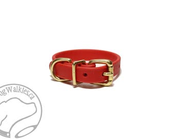 "Poppy Red Biothane Dog Collar - 5/8"" (16mm) wide - Leather Look and Feel - Small Dog Collar - Stainless Steel or Brass Hardware Option"