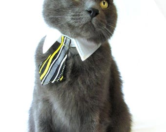 Yellow Stripe Bow Tie, Necktie, or Bow on a Shirt Style Collar for both Dogs & Cats