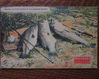 Vintage Manly Linen Postcard, Fish, Fishing, Missouri Ozarks History, Show Me State, Trout, Nostalgic Mens Retro Vacation Souvenir, Tourism