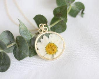 Pressed Daisy Gold Circle Necklace