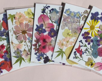 "Pressed flower packs, each with enough flowers to make a 5"" x 7"" arrangement."