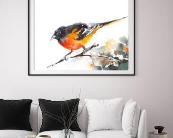 Baltimore Oriole Bird Art Print, Bird wall art print, watercolor painting print of bird, bird art, black and yellow bird print
