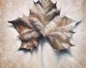 Autumn Art, Leaf Print, A...