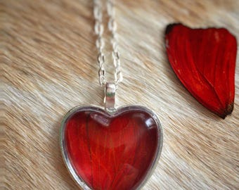 Heart Red Butterfly Wing // Romantic Gifts // Real Butterfly Necklace // Ways to Say I Love You // Butterfly Lover // Sweetheart Necklace
