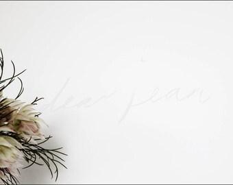 Minimalist Flora Stock Photo | Stock Photography, Florist, Flowers, Social Media Images, Blog Header, Muted, Minimalist