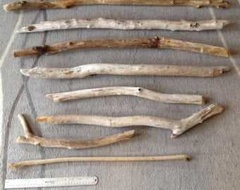 Beach Driftwood collected in the Pacific NW - Lot 4