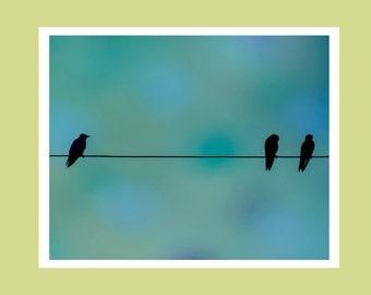 Bird wall art, birds on a wire, bird art, fine art photography, baby nursery art, fine art bird print, bird photography, bird wall decor