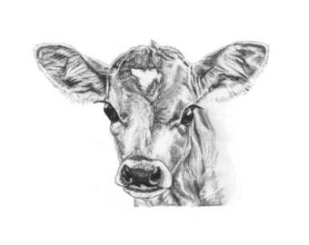 ORIGINAL ARTWORK A4 PRINT Charcoal Drawing of a Calf by Animal Artist Elena Pimentel