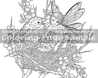 Art Of Meadowhaven Fantasy Coloring Page Download Get Your Own Chick