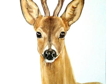ORIGINAL!! Deer Watercolor Painting, Deer Portrait
