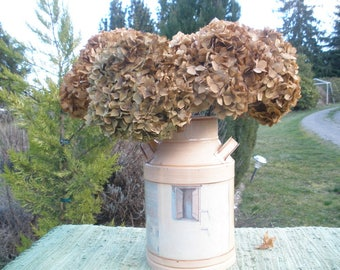 5 Jumbo Dried hydrangea flowers- Antique gold/ brown/ green/ ivory- rustic flowers for vase or crafts- Farmhouse floral decor