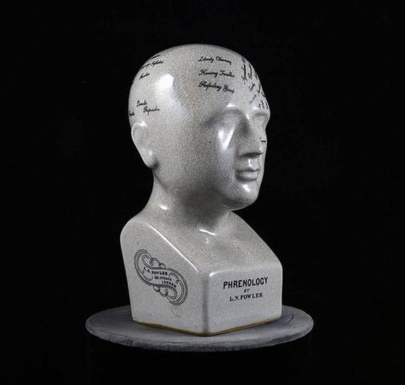 "Phrenology Head-Phrenology Bust-Phrenology Skull 8 1/4"" Ceramic Crackle Glazed-pseudoscience-LN Fowler Bust"