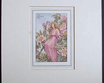 Mounted Wild Rose Fairy by Cicely Mary Barker