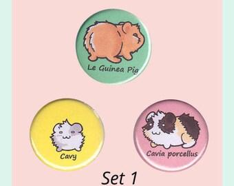 Guinea Pig Badge Set - guinea pig pin, guinea pig button, cavy button, guinea pig accessory, guinea pig illustrations, kawaii badges
