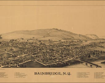 Poster, Many Sizes Available; Birdseye View Map Of Bainbridge, N.Y.  1889