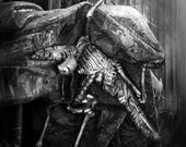 8x10 Bernini Angel of Death Vatican Fine Art Photography Metallic Art Print
