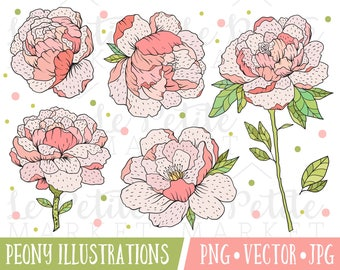 Peony Clipart Images, Pretty Wedding Flower Clipart, Pink Peony Illustrations, Digital Peony Clip Art, Wedding Floral Clipart, Vector Peony