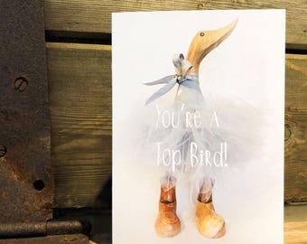 Gift card. 'You're a top bird'